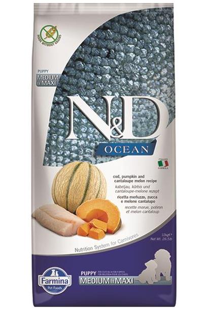 N&D dog OCEAN PUMPKIN (GF) puppy medium & maxi, cod & cantaloupe melon 12 kg