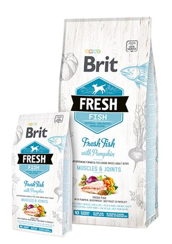 BRIT Fresh Adult Large ryba s tekvicou 12 kg